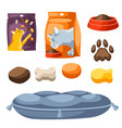 set various cat items vector image