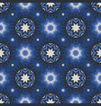 winter blue snowy snowflake stars for xmas vector image vector image