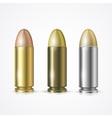 Pistol Bullet Set vector image
