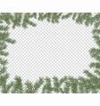 a frame fir branches vector image vector image