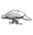 eagle shown from nature pattern in this design vector image vector image