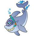 shark snorkel diver vector image