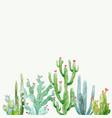 Watercolor cactus composition vector image