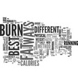 best ways to burn fat text word cloud concept vector image vector image