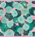 colorful waterlily leaves in a tropical exotic vector image vector image