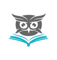 owl open book logo design template isolated vector image vector image