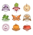 Vegetables Colorful Labels Set vector image vector image