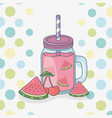 watermelon juice fruit in pot with straw vector image vector image