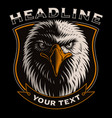 with head eagle vector image