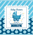 baby shower celebration vector image vector image