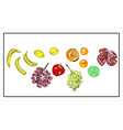 isolated fruits vegan vector image vector image