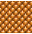 luxury leather upholstery vector image vector image