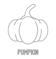 pumpkin icon outline style vector image