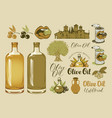 set of design elements on the theme of olive oil vector image