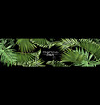 tropical leaves web banner vector image vector image