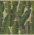 tropical palm banana leaves seamless pattern vector image vector image