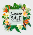tropical summer sale background with exotic vector image