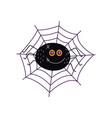 flat halloween black spider in net vector image