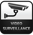 cctv symbol video surveillance sign security camer vector image vector image