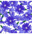 floral seamless pattern with chicory vector image