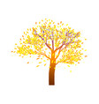 lonely autumn tree with bright foliage on a vector image vector image