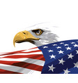 national symbol usa vector image vector image