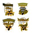 olive oil label set with black fruit and splash vector image vector image