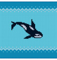 seamless knitted pattern with orca vector image