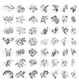 set of floral design vector image vector image