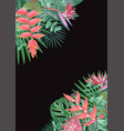 tropical flower angular background vector image vector image