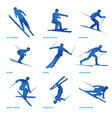 winter sports icon set 3 vector image