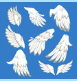 angel or bird wings flight pair and single white vector image