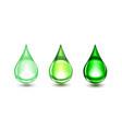 green drops vector image