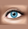 human eye realistic 3d image vector image vector image