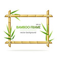 realistic 3d detailed bamboo shoots frame vector image