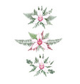 set floral branch flower pink orchid green vector image vector image