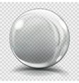 Big gray glass sphere vector image vector image