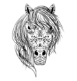 black and white sketch horse head Zen-tangle vector image
