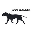 dog walker logo design canine animal black icon vector image