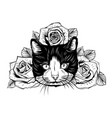 hand drawn portrait cat with floral head wreath vector image