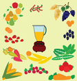 RAW FOOD vector image