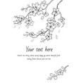 sakura flowers blossom set hand drawn line ink vector image