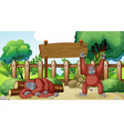 scene with two chimpanzees in zoo vector image vector image