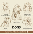 set hand drawing dogs 8 vector image vector image