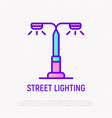 street lighting thin line icon vector image