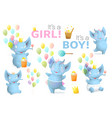 baby elephant boy and girl birthday object clipart vector image