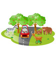 boy driving in open safari vector image vector image
