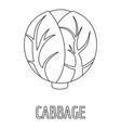 cabbage icon outline style vector image vector image