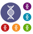 dna strand icons set vector image vector image