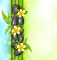 Spa therapy background with bamboo stones and vector image vector image